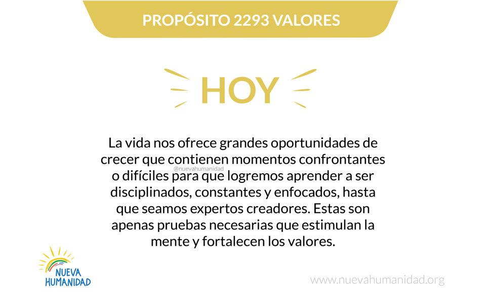 Propósito 2293 Valores