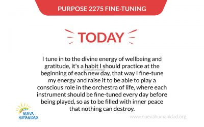 Purpose 2275 Fine-tuning