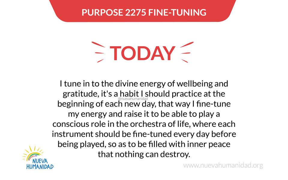 Purpose 2275 Fine-tuning