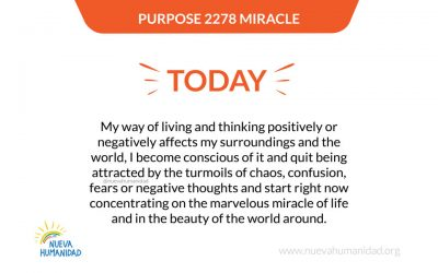 Purpose 2278 Miracle