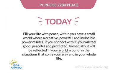Purpose 2280 Peace