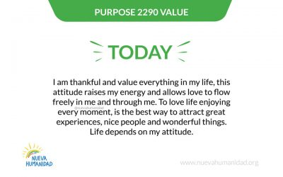 Purpose 2290 Value
