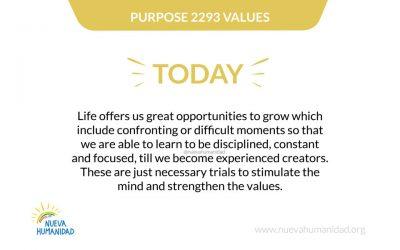 Purpose 2293 Values