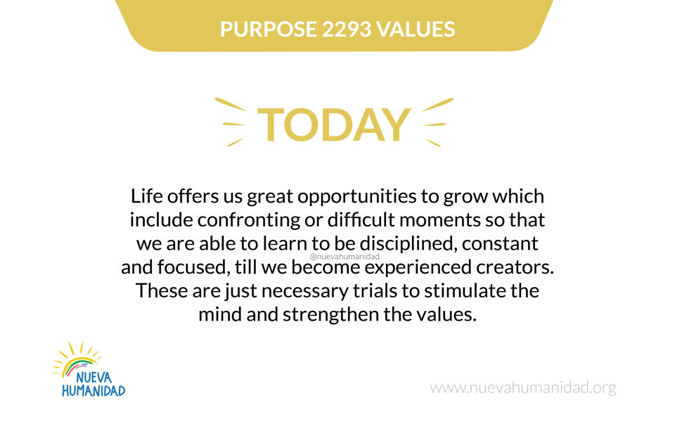 Purpose 2293 Values