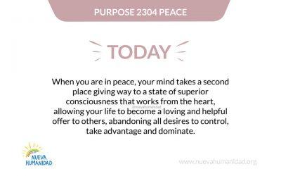 Purpose 2304 Peace