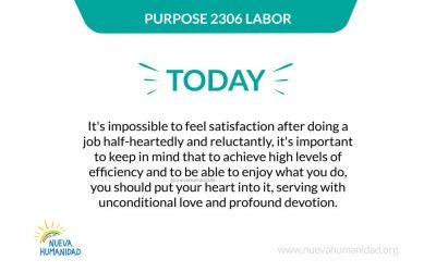 Purpose 2306 Labor