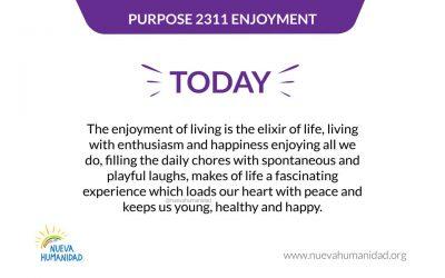Purpose 2311 Enjoyment