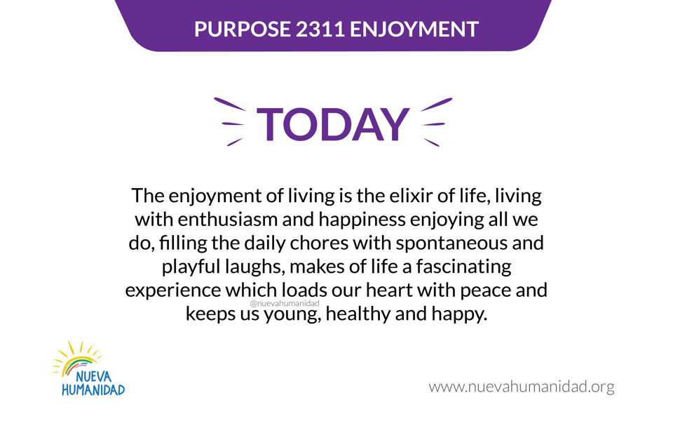 Purpose 2311 Enjoyment