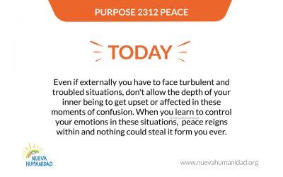 Purpose 2312 Peace