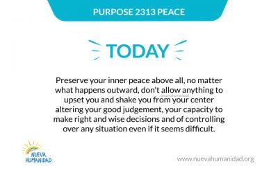 Purpose 2313 Peace