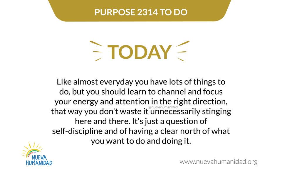 Purpose 2314 To do
