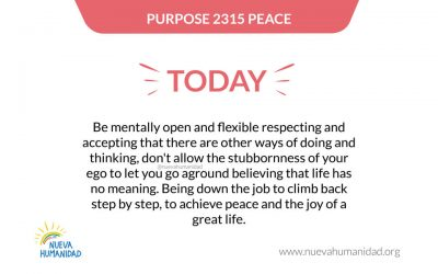 Purpose 2315 Peace