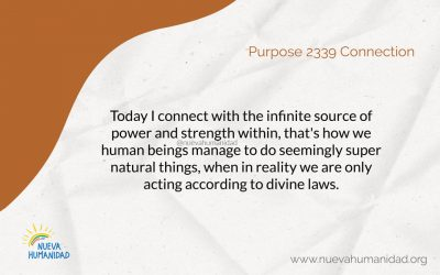 Purpose 2339 Connection