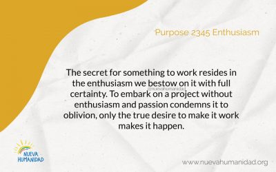 Purpose 2345 Enthusiasm