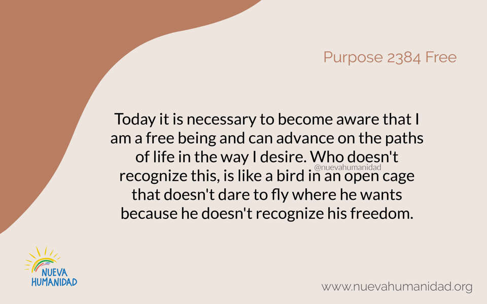 Purpose 2384 Free