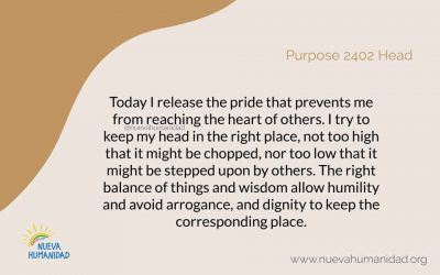Purpose 2402 Head
