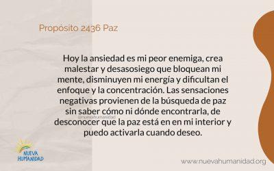 Propósito 2436 Paz