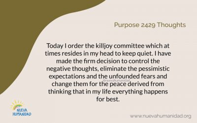 Purpose 2429 Thoughts