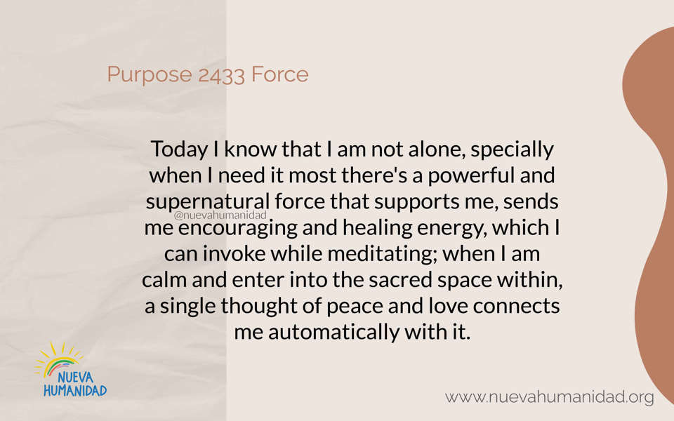 Purpose 2433 Force