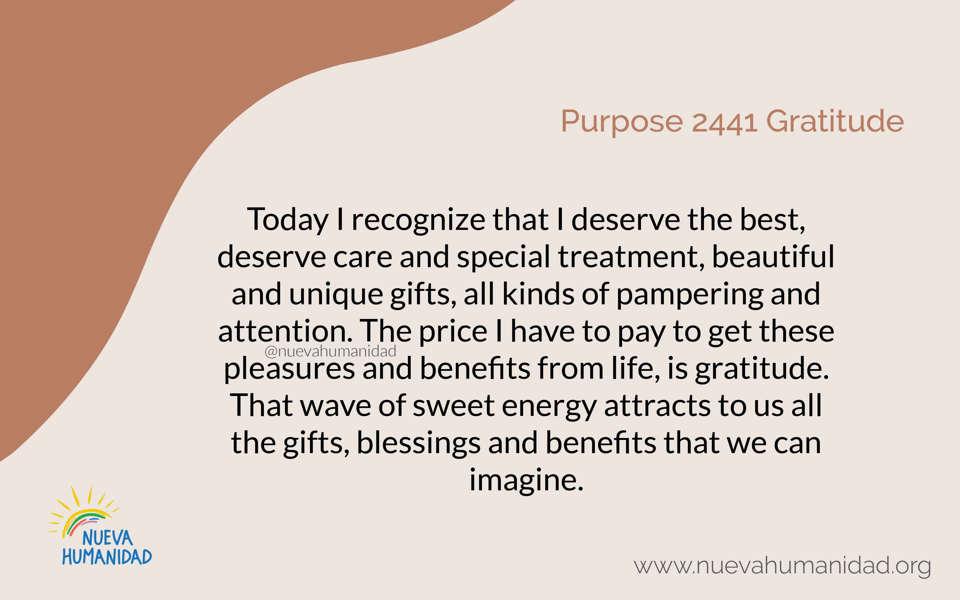 Purpose 2441 Gratitude