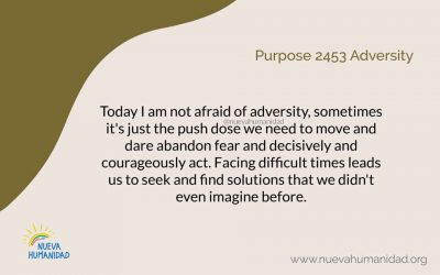 Purpose 2453 Adversity