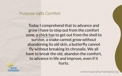 Purpose 2481 Comfort