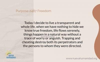 Purpose 2487 Freedom