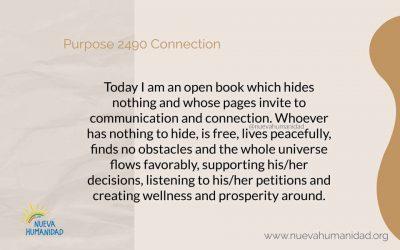 Purpose 2490 Connection