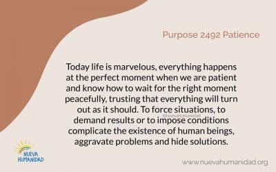 Purpose 2492 Patience