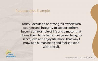 Purpose 2505 Example