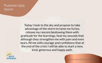 Purpose 2515 Storm