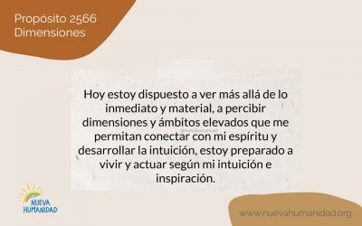 Propósito 2566 Dimensiones