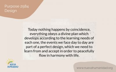 Purpose 2584 Design