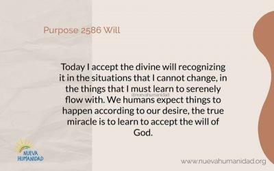 Purpose 2586 Will