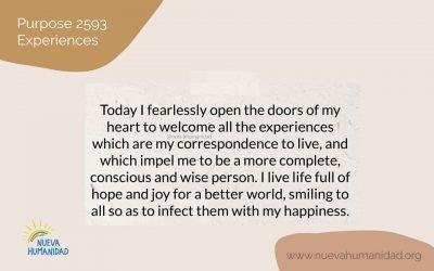 Purpose 2593 Experiences