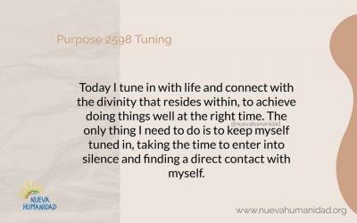 Purpose 2598 Tuning
