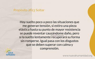 Propósito 2613 Soltar