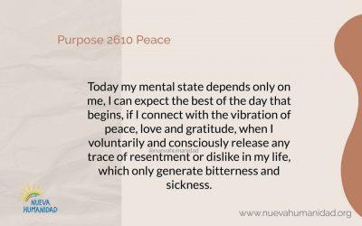 Purpose 2610 Peace
