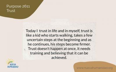 Purpose 2611 Trust