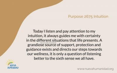 Purpose 2675 Intuition