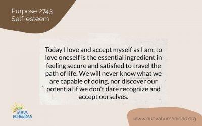 Purpose 2743 Self-esteem