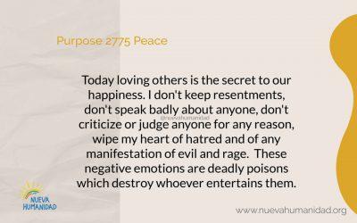 Purpose 2775 Peace