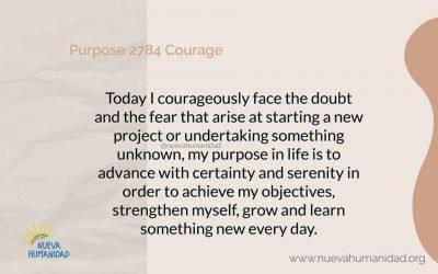 Purpose 2784 Courage