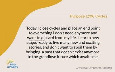Purpose 2786 Cycles