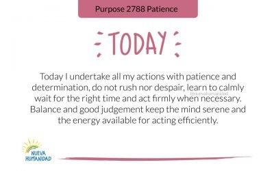 Purpose 2788 Patience