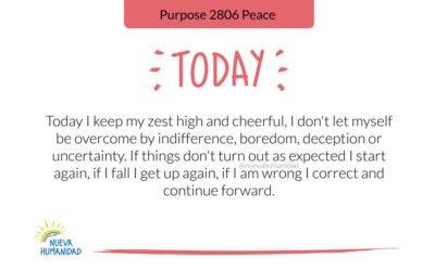Purpose 2806 Peace