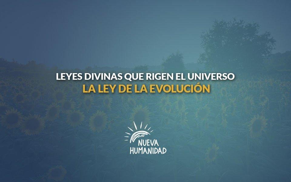 La ley de la evolución – Leyes divinas que rigen el universo