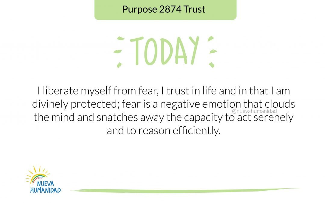 Purpose 2874 Trust