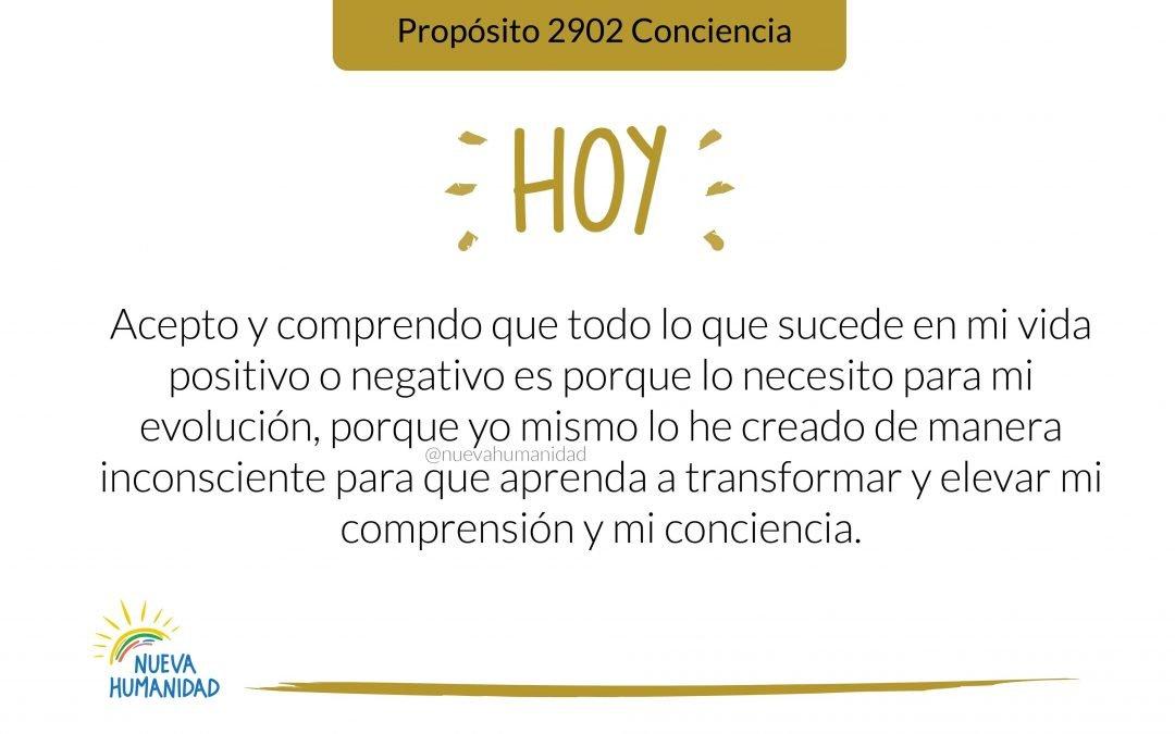 Propósito 2902 Conciencia