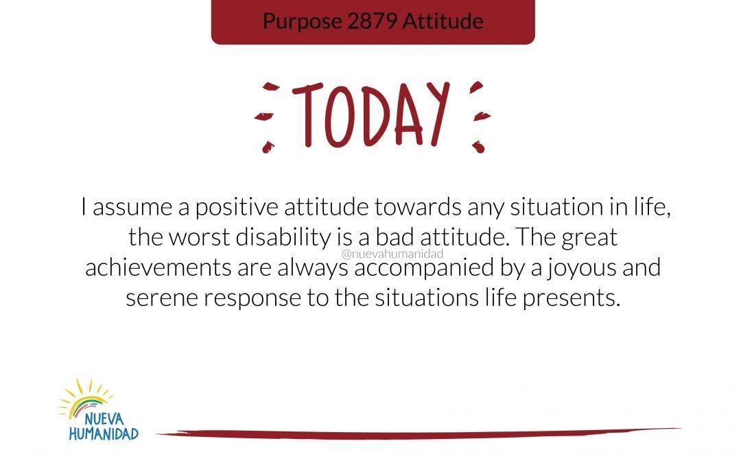 Purpose 2879 Attitude